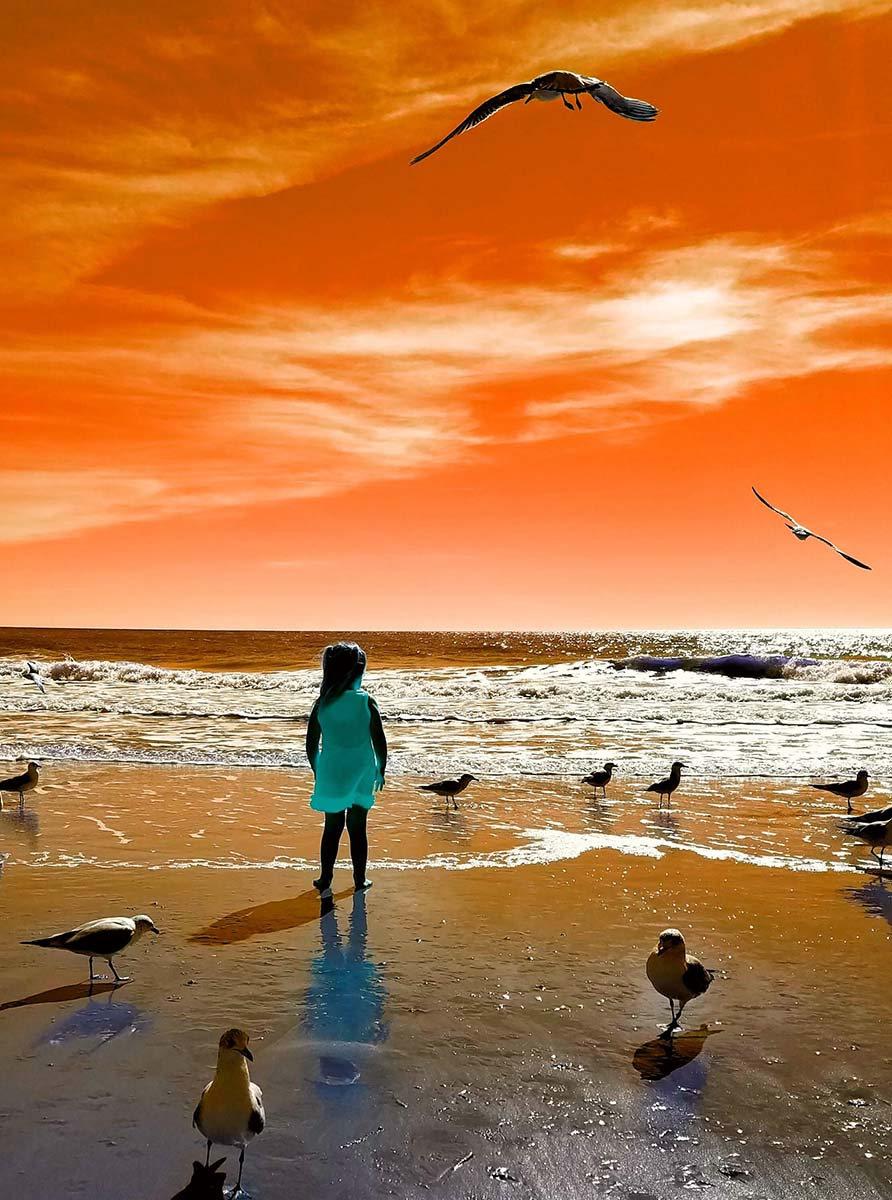 Orange sky little girl with seagulls