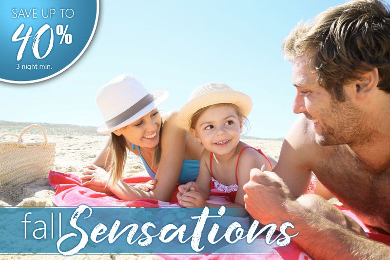 Fall Sensations - 40% Off