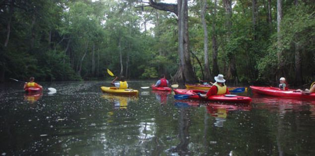 Nature Beckons with Black River Outdoors
