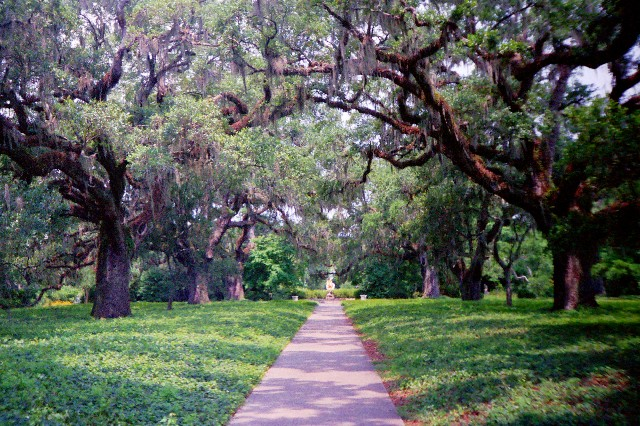 Enjoy Cool Summer Evenings at Brookgreen Gardens