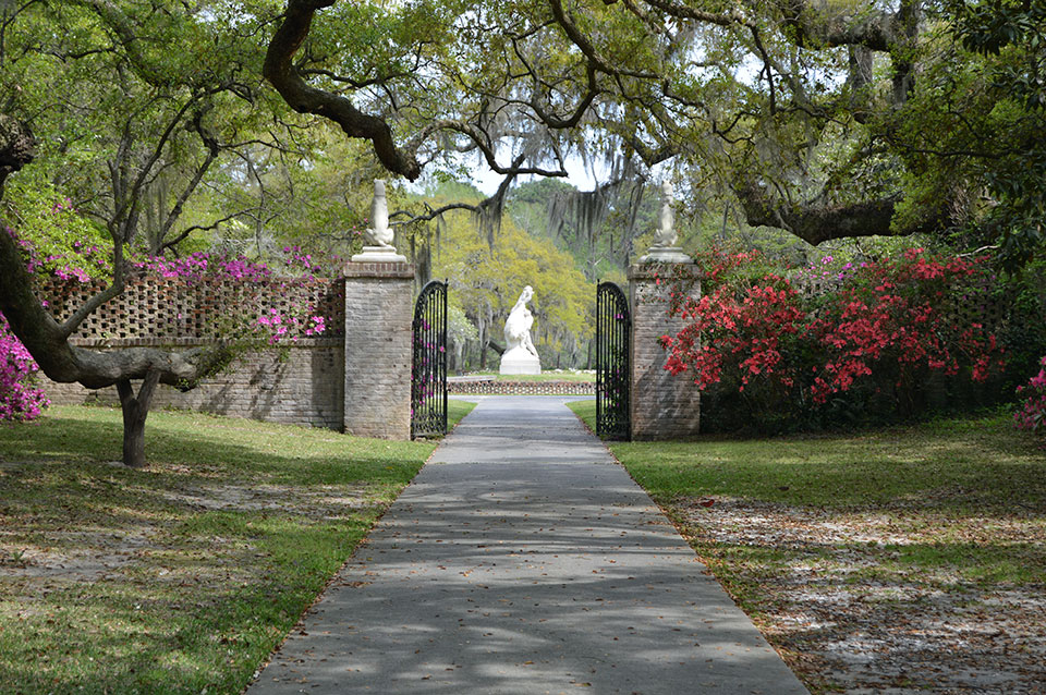 Spring is in Bloom at Brookgreen Gardens