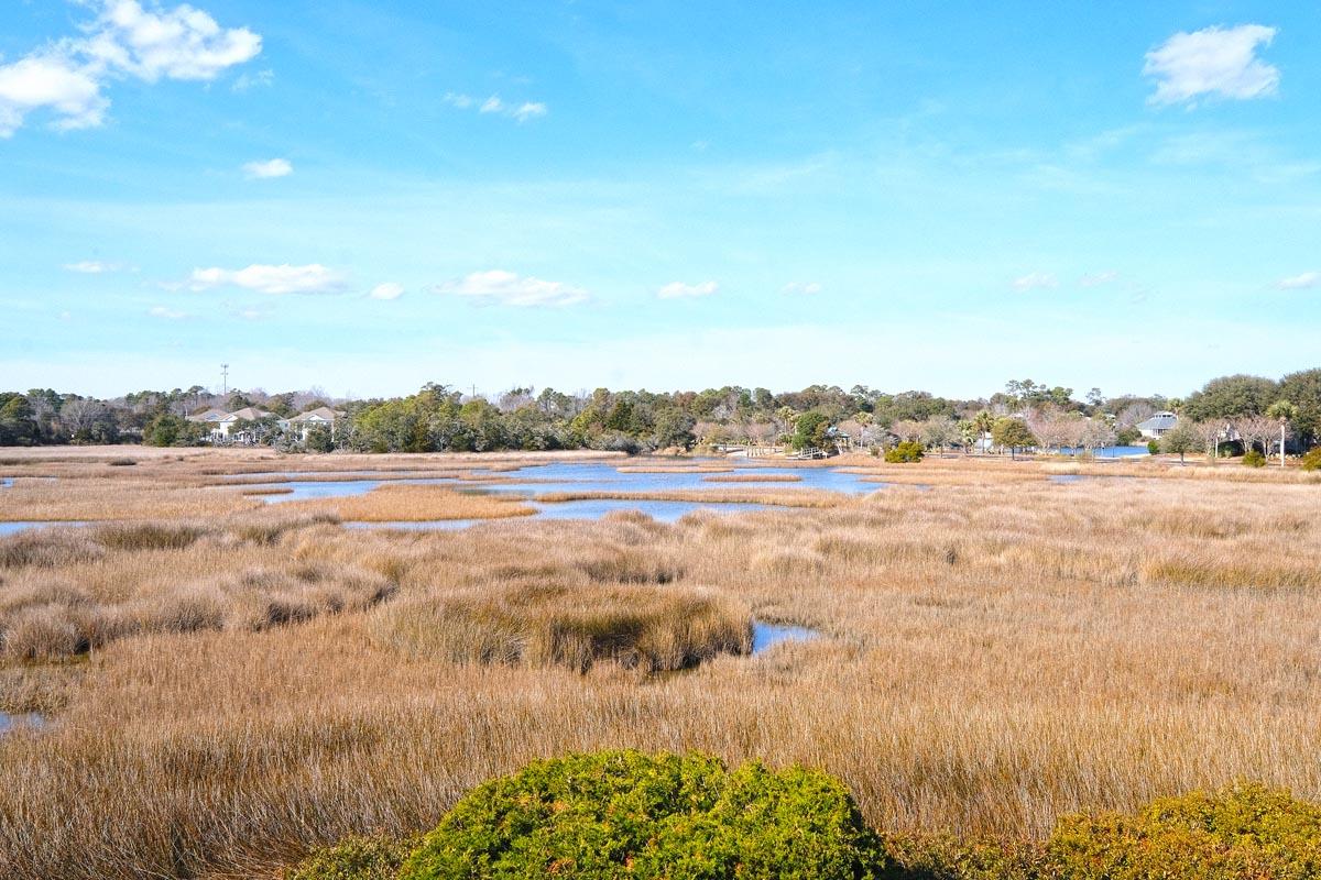 Heron Marsh 13 South Carolina