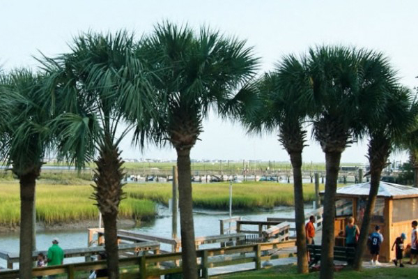 Experience the Best of Murrells Inlet at the Taste of the MarshWalk