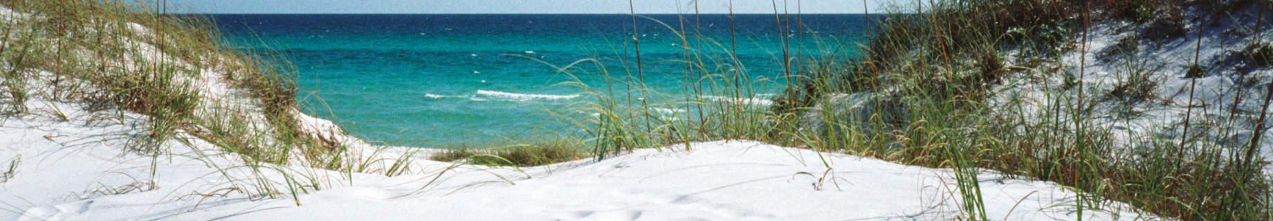 Myrtle Beach Ocean Dunes Vacation