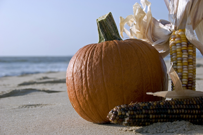 Top 5 Ways to Spend Your Fall Vacation in Myrtle Beach