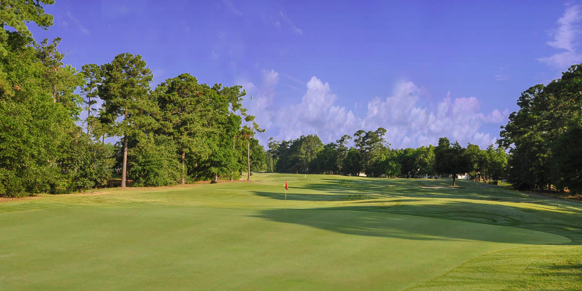 WGT World Golf Tour Sport Analysis