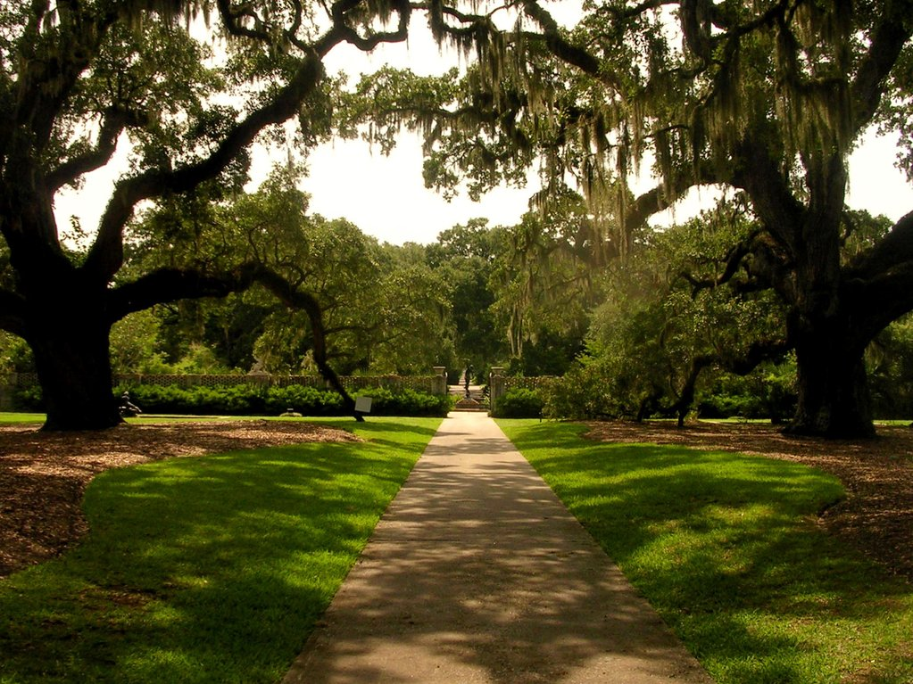 Fall in Love with Summer at Brookgreen Gardens